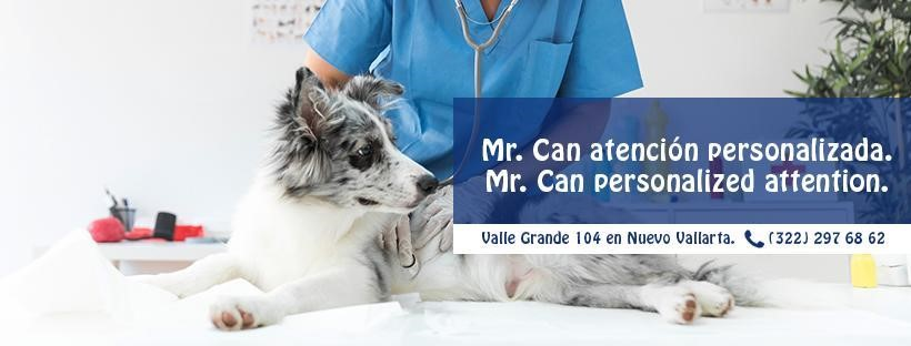 emergencias veterinarias, atiendelas en Veterinaria Mr. Can