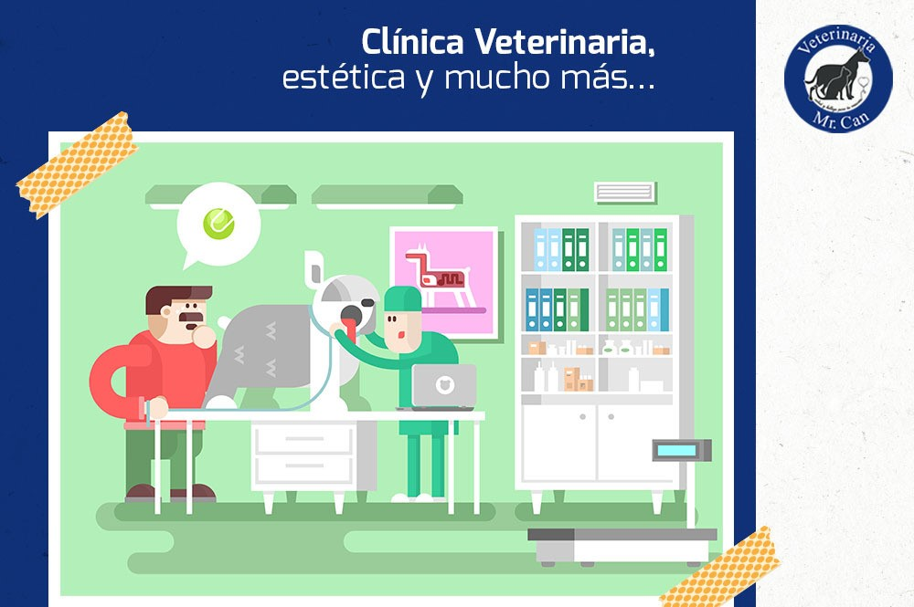 clínica, estética y radiología veterinaria