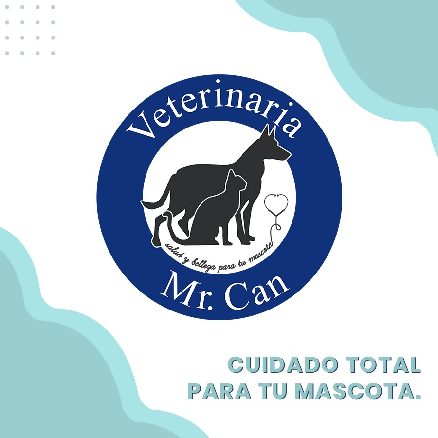 cuidado total para tu mascota en Veterinaria Mr. Can